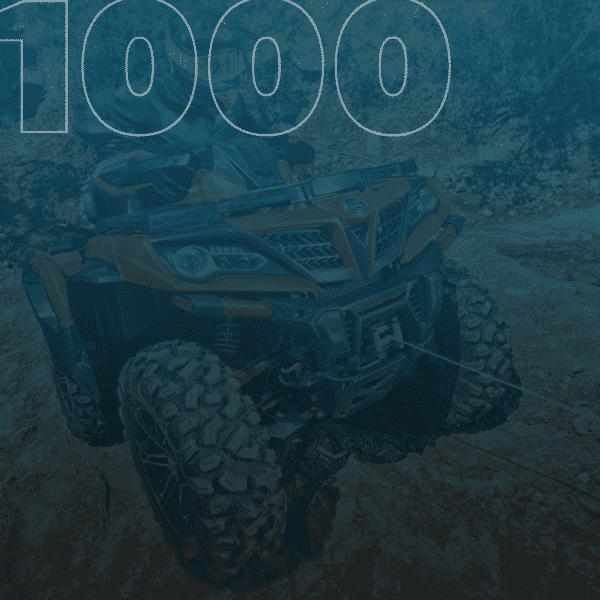 ficha-1000